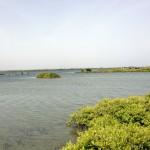 Jaffna Island Site 3